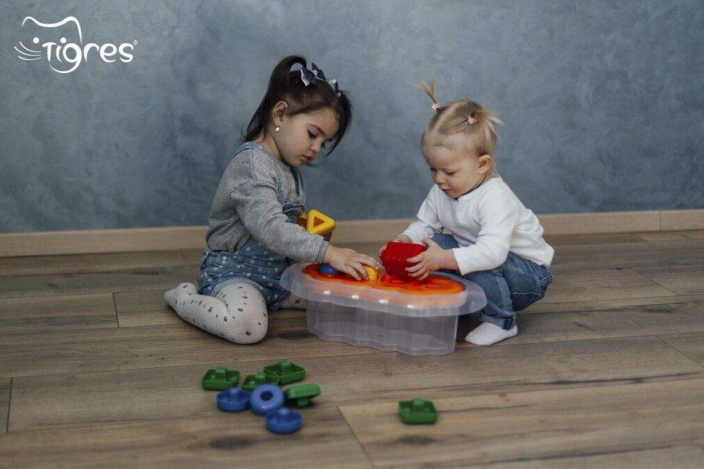 Photo - Shape sorter is the most useful educational toy for one-year-old kids