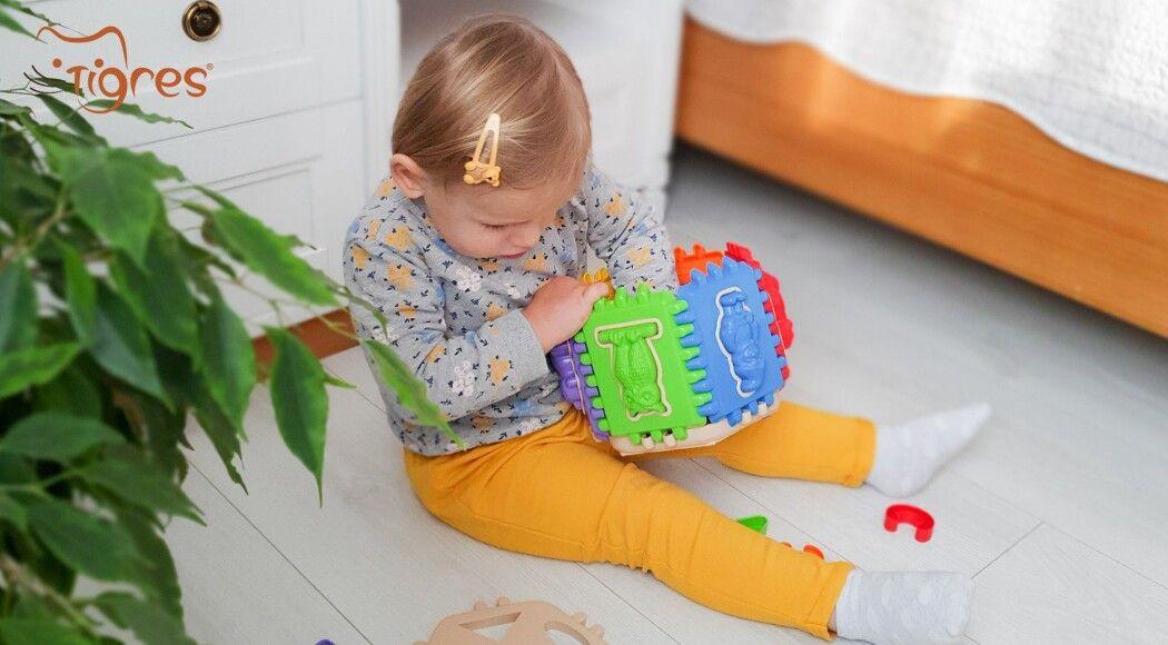 Фото - Сортер – відмінна зарядка для маленьких голівок