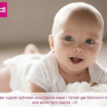 Фото Lovi №0