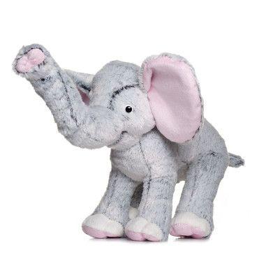 Слоник сірий