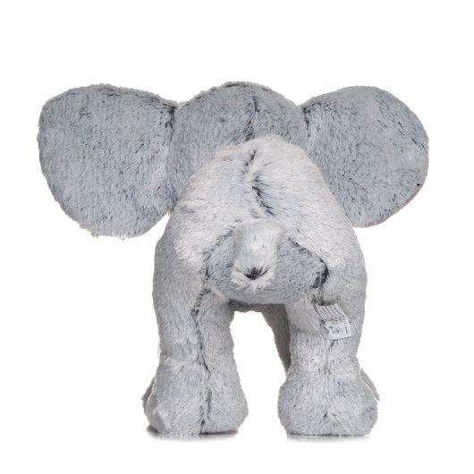 Слоник сірий  - 5