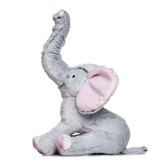 Слоник сірий  - 4