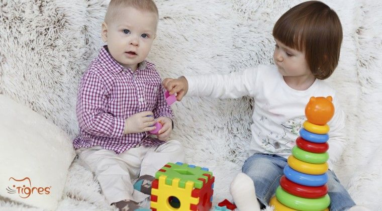 Фото - Сортер - развивающая игрушка для детей