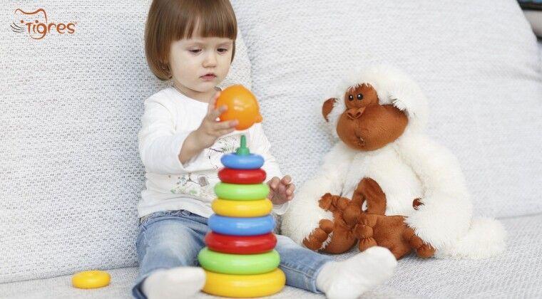 Фото - 5 іграшок must have для  дитини від 1 до 3 років